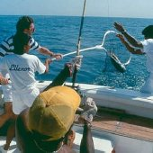 Le Royal Meridien Beach Resort and Spa offers Fishing packages