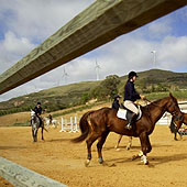 Dolce Campo Real Residences offers Horse Riding packages
