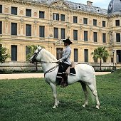 Barcelo Montecastillo Golf Hotel offers Horse Riding packages