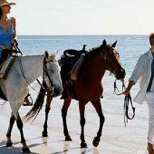 Westin Punta Cana Resort and Club offers Horse Riding packages