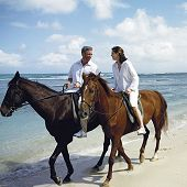 Half Moon Resort offers Horse Riding packages