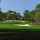 Innisbrook Golf Resort offers PGA Tournaments - Stay and Play Packages packages
