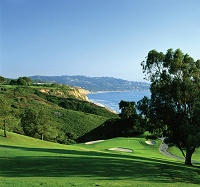 Torrey Pines - South